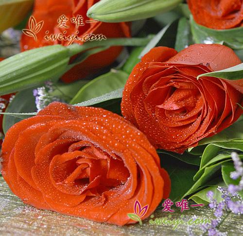 perfume lilies