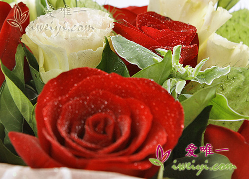 send a bouquet of red roses and champagne lisianthus to China