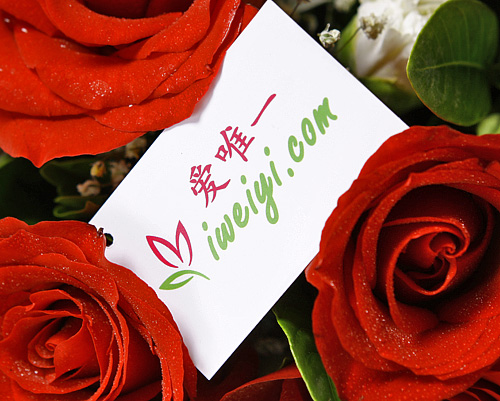 send a bouquet of red roses to China