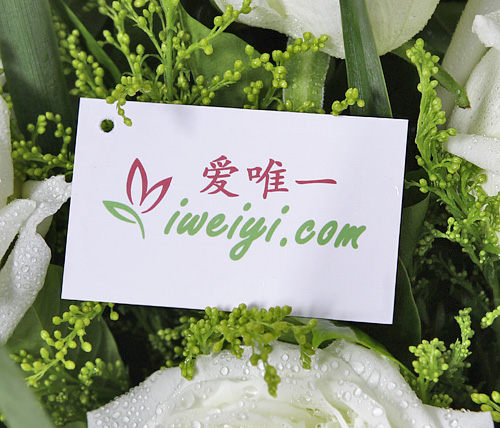 white roses delivery in China