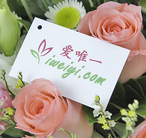 send a bouquet of pink roses and pink carnations