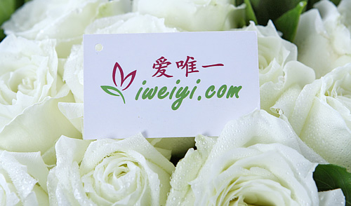 send white roses to China