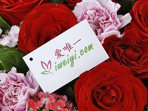 send a bouquet of red roses and pink carnations