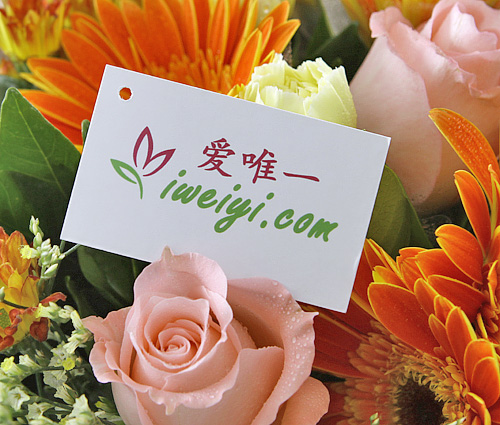 send a bouquet of pink roses, orange gerbera and yellow carnations to China