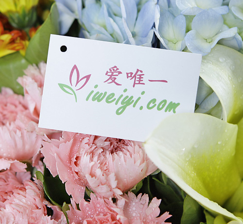 send a bouquet of yellow lilies and pink carnations