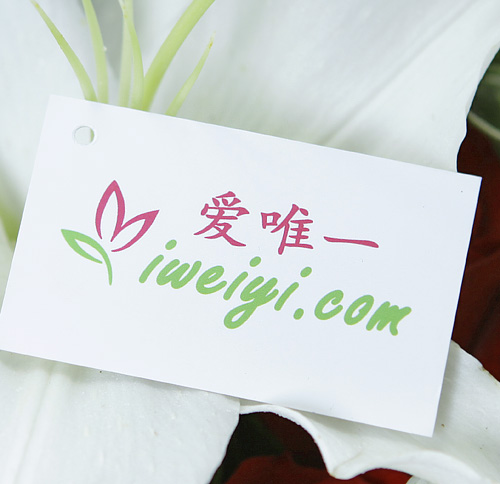order a bouquet of white lilies and red roses in China