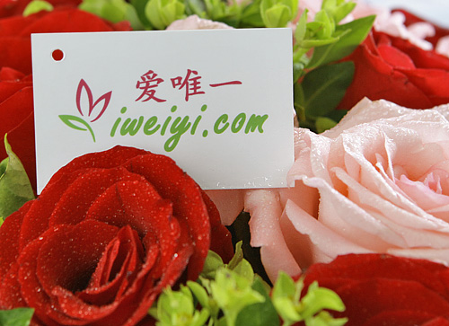 send a bouquet of pink roses and red roses to China