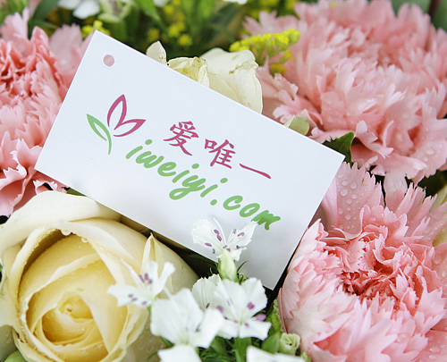 send a bouquet of champagne roses and pink carnations to China