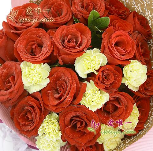 yellow carnations