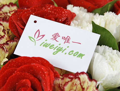 send a bouquet of red roses and multicolor carnations to China