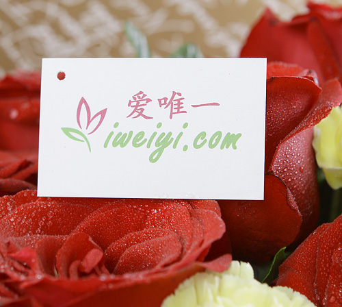 send a bouquet of red roses and yellow carnations