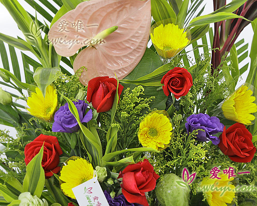 basket of spray red roses and yellow gerberas