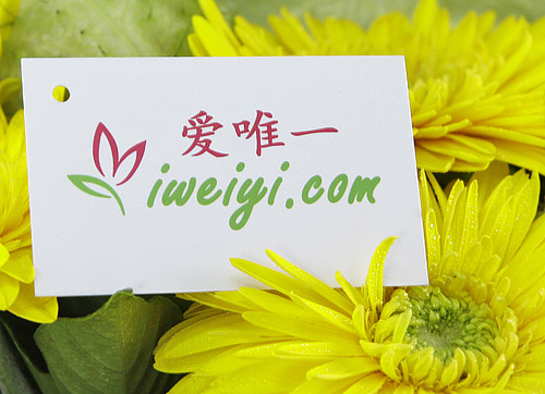 send a bouquet of yellow gerbera to China