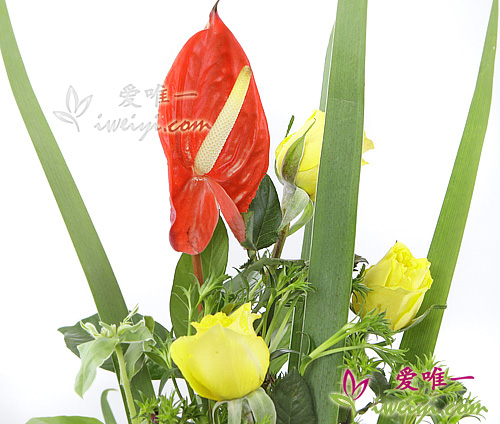 send a vase of yellow roses to China