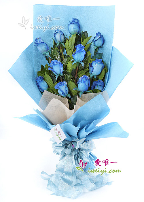 The bouquet of flowers « Blue Vision »