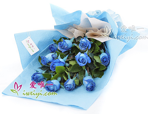 bouquet of 11 blue roses