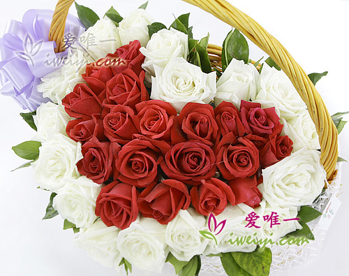 Basket composed of 19 red roses and 19 white roses