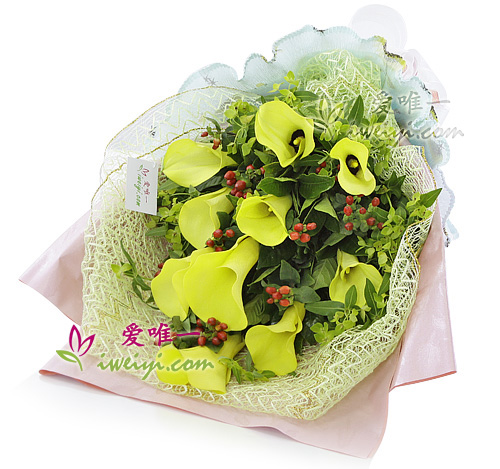 bouquet of 10 yellow calla lilies