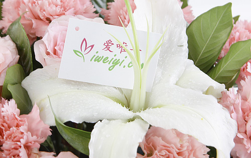 send a basket of pink roses, pink carnations and white lilies to China