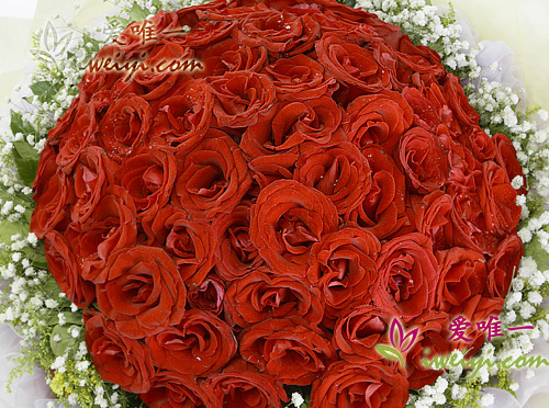 bouquet of 99 red roses