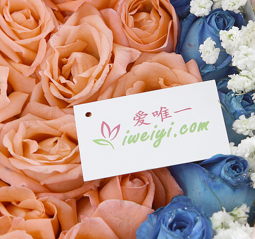 send a box of blue roses and pink roses to China